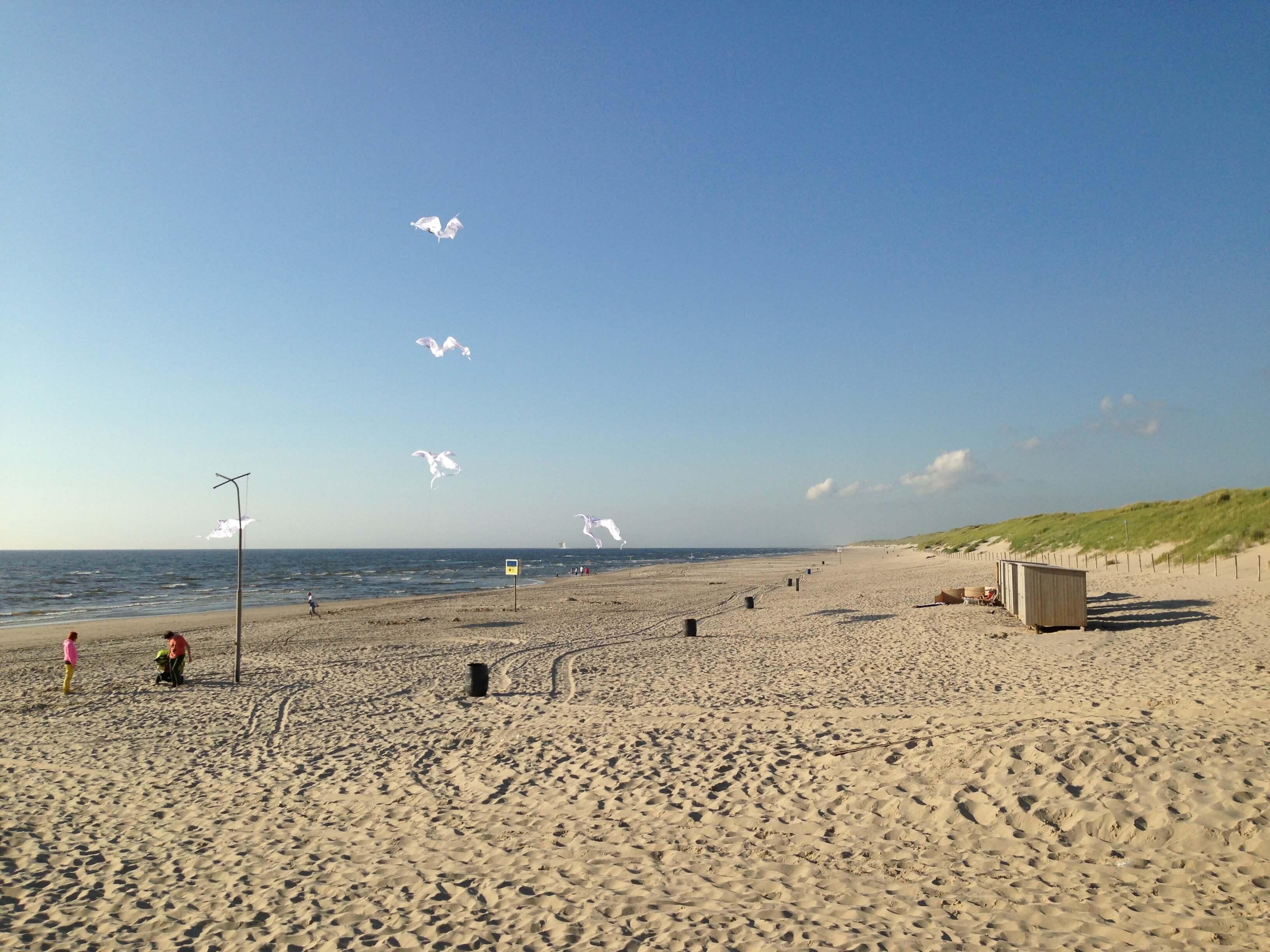 Strand und Dünen in Sint Maartenszee (3)