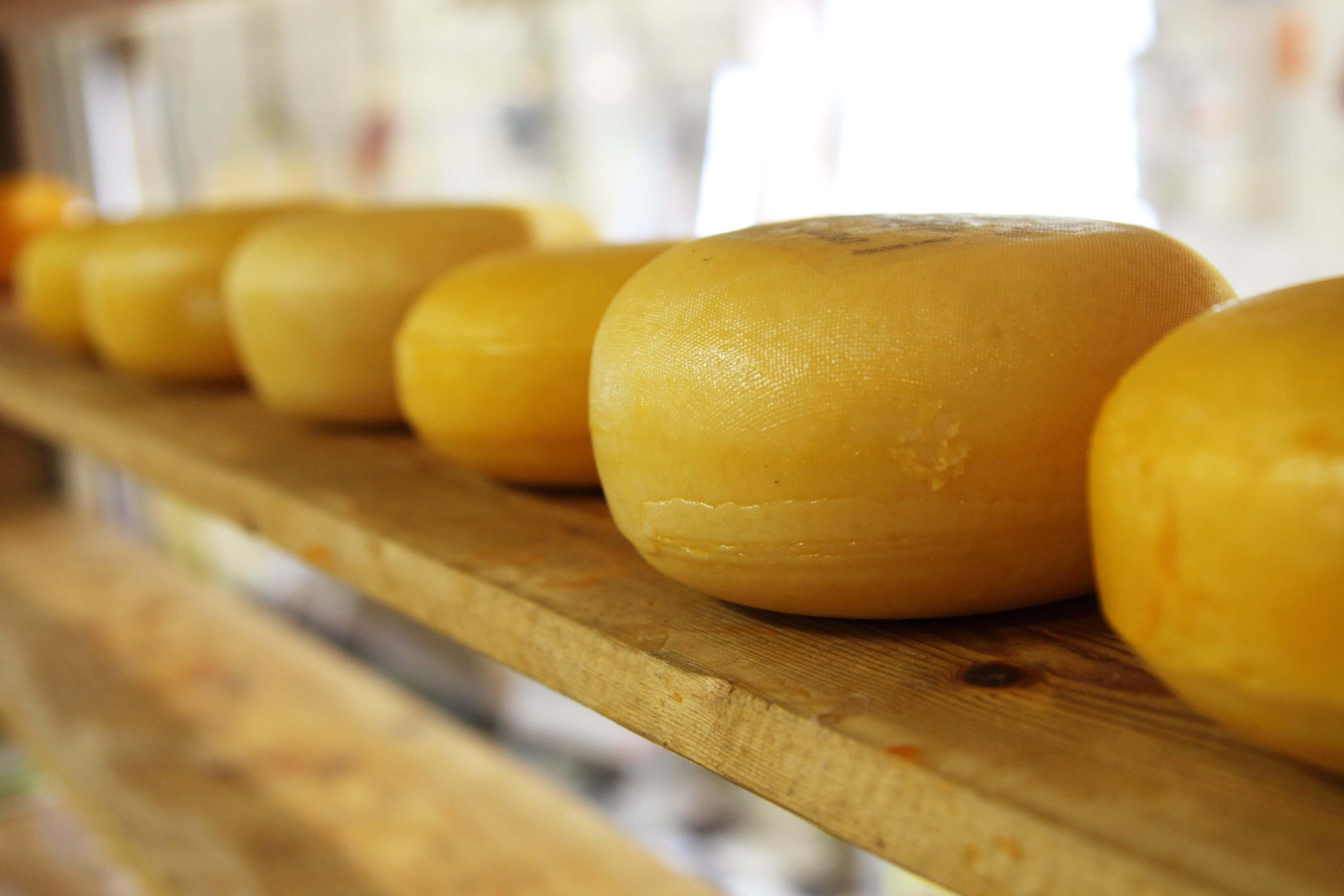 Käse aus Holland
